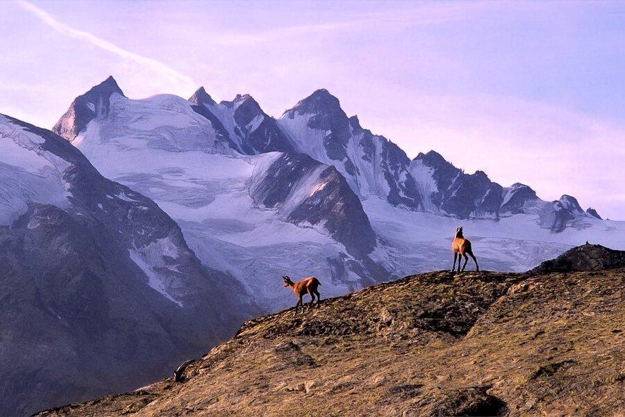 Gran Paradiso Besteigung (4061m)