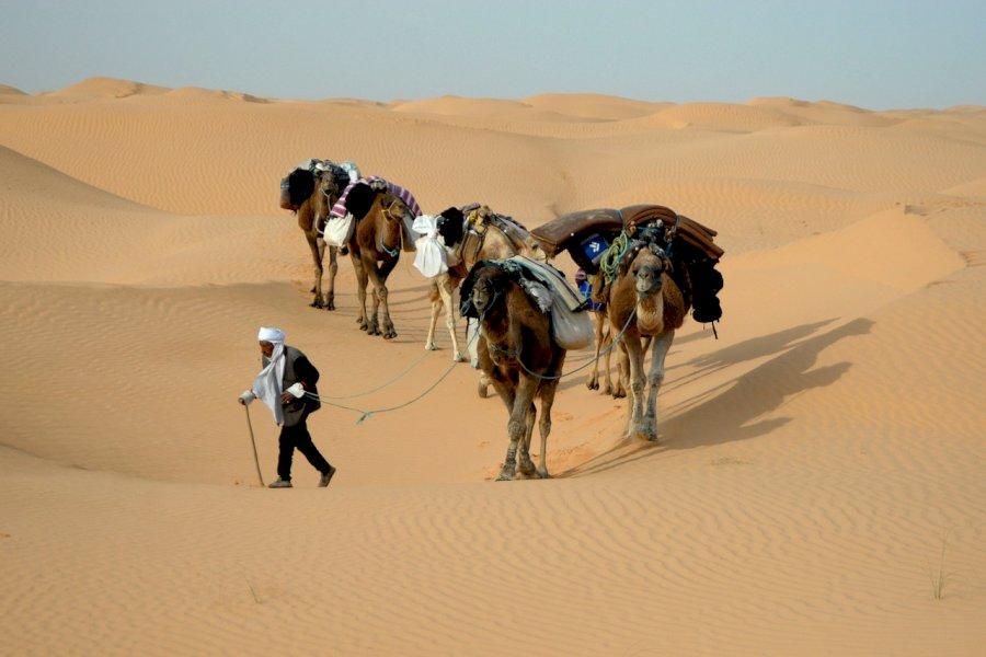 Die ultimative Sahara Wüsten Erfahrung
