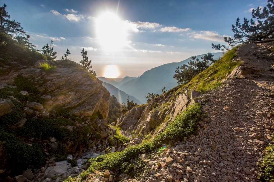 Trekke auf den Gipfel des Olymps (2.917 m)